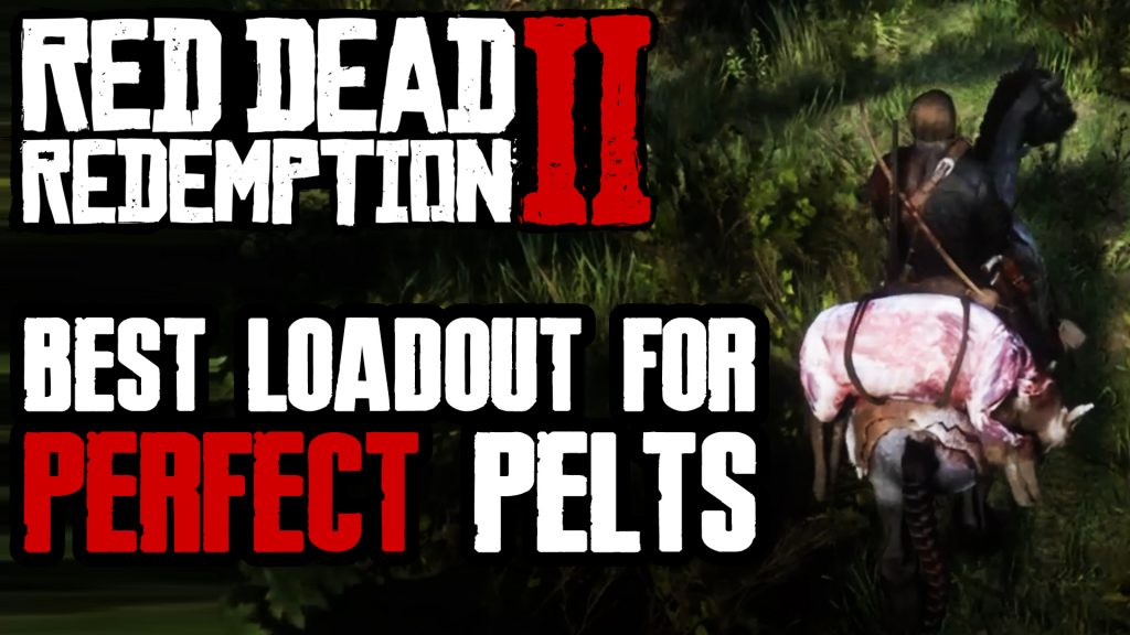 BEST HUNTING LOADOUT FOR ALL ANIMALS & AMMO FARMING IN RED DEAD REDEMPTION 2 Thumbnail