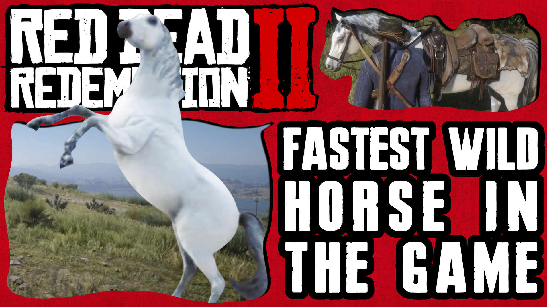 HOW & WHERE TO GET THE FASTEST HORSE IN RED DEAD REDEMPTION 2 Thumbnail 4